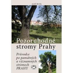 Pozoruhodné stromy Prahy. Průvodce po památných a významných stromech Prahy: Aleš Rudl - DEFEKT - ZAŠPINĚNÉ LISTY